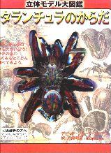 説明: http://hispider.la.coocan.jp/tokyoss/tarantulabody.JPG